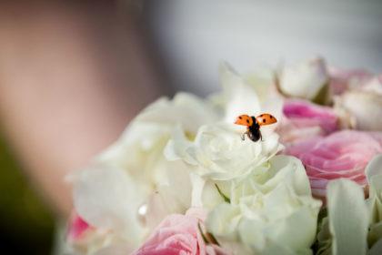 Hochzeitsfotograf-Hochzeitsreportage-Neuss-041